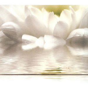 estor-enrollable-impresion-digital-screen-gallery-flores-0438