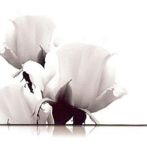 estor-enrollable-impresion-digital-screen-gallery-flores-0440