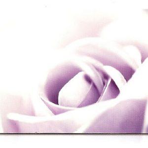 estor-enrollable-impresion-digital-screen-gallery-flores-0443