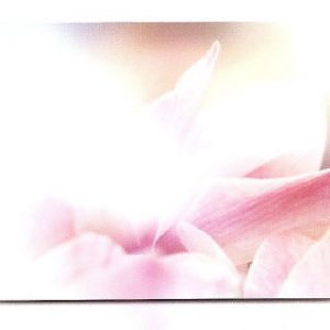 estor-enrollable-impresion-digital-screen-gallery-flores-0448
