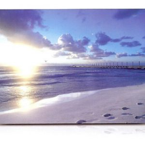 estor-enrollable-impresion-digital-screen-gallery-paisajes-0416