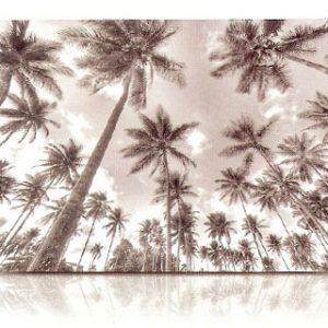 estor-enrollable-impresion-digital-screen-gallery-paisajes-0421