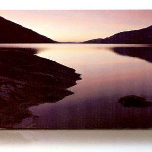 estor-enrollable-impresion-digital-screen-gallery-paisajes-0426