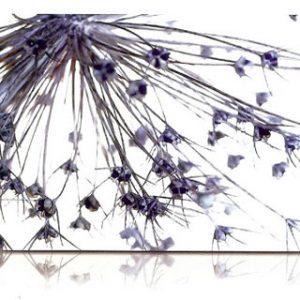 estor-enrollable-impresion-digital-screen-gallery-zen-0485