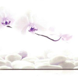 estor-enrollable-impresion-digital-screen-gallery-zen-0492